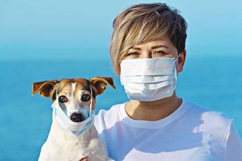 Huisdieren toch besmet met het Coronavirus!? Featured Image
